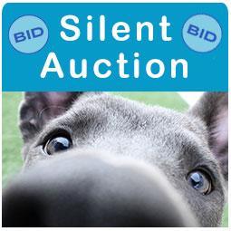 Silent Auction sidemenu image placeholder