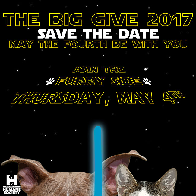 Big Give save 2017 web