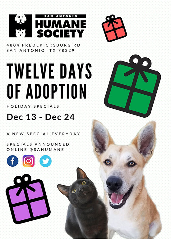 Twelve Days of Adoption web