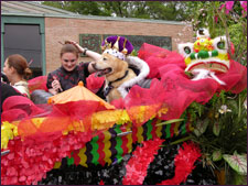 Ruling Dogs of China - HSSA at the Battle of Flowers Parade