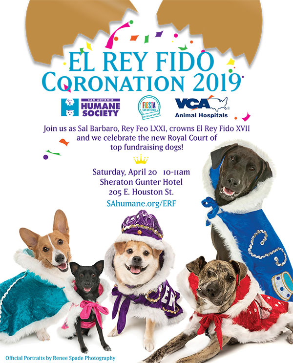 2019 erf coronation flyer new web
