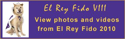View Photos and Video from El Rey Fido 2010