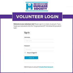 Volunteer login2